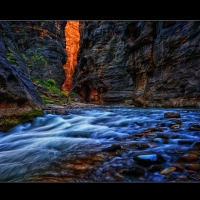 We_Found_Gold_On_Wall_Street_Zion_National_Park