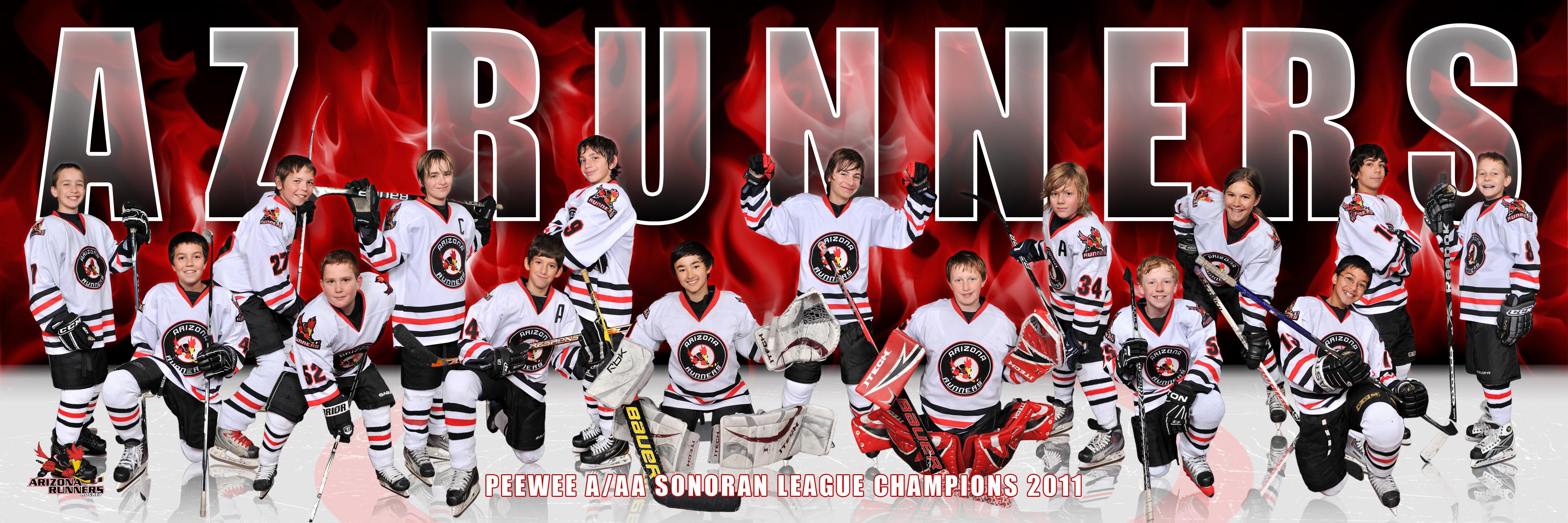 Arizona Runners Hockey Team Picture