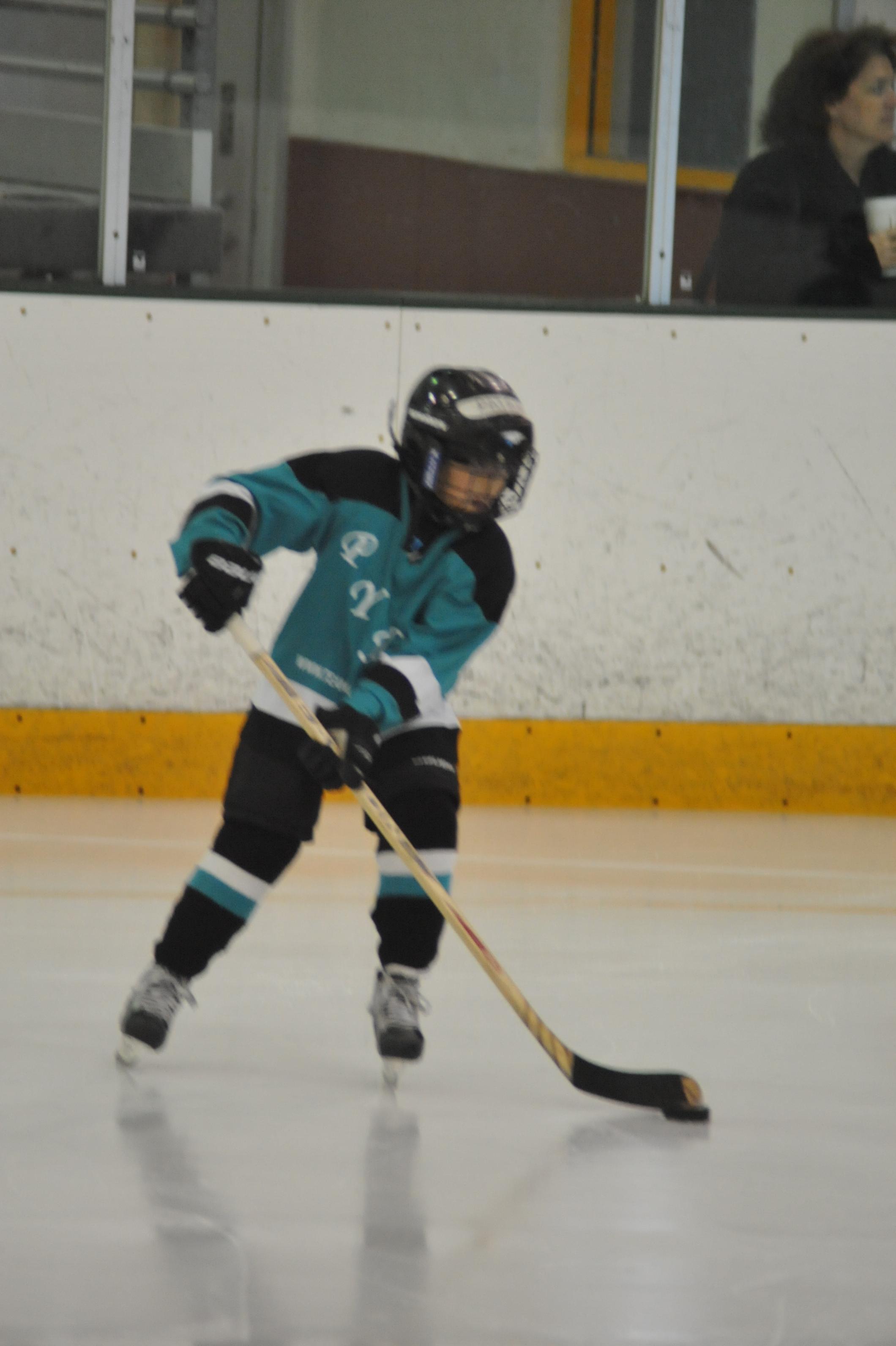 Hockey Action Shot